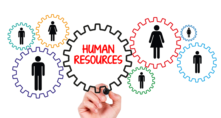 Human Resources as Interconnected, Interdependent Human Gears